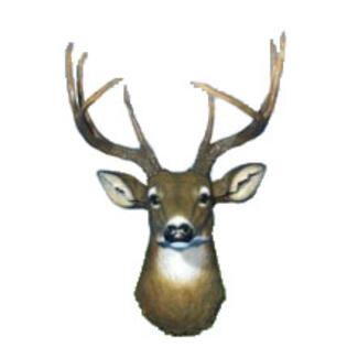 Deer Head Wall Hanging