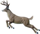 Archery & Animal Themed