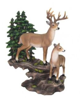 Buck and Doe on Mountainside