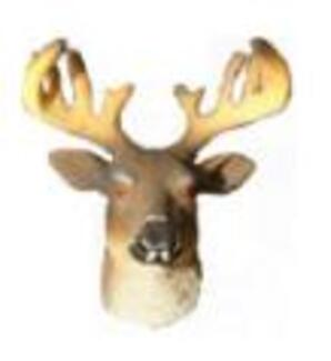 Deer Head Magnet (hard)