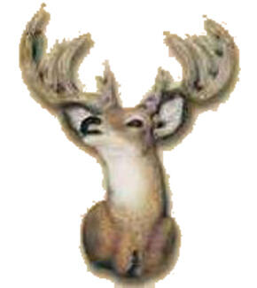 Deer Head Magnet (soft)